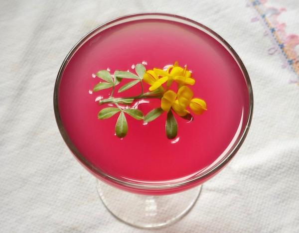 rhubarb-bitte-home-show.jpg